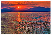1916 - Cisano Sea Sunset - -