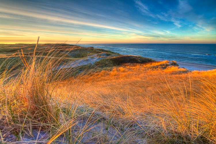 2495 - Sunrise over marram grass - Sonnenaufgang über Dünengras