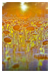 6205 - Sunflowers sunset - -