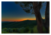 6236 - Montemassi Sundown - -