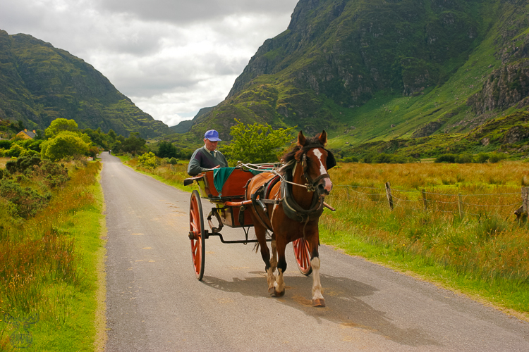 930 - Gap of Dunloe Coach - Kutsche im Gap of Dunloe