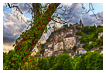 9733 - Rocamadour tree glance - -